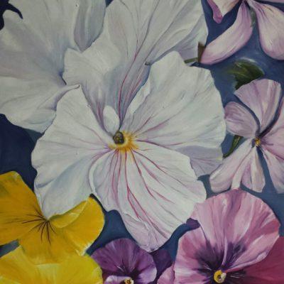 Hornveilchen  100 x 100 cm