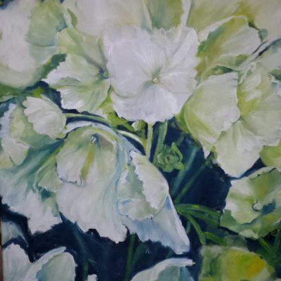 Hortensie / 60 x 80 cm / Öl auf Leinwand